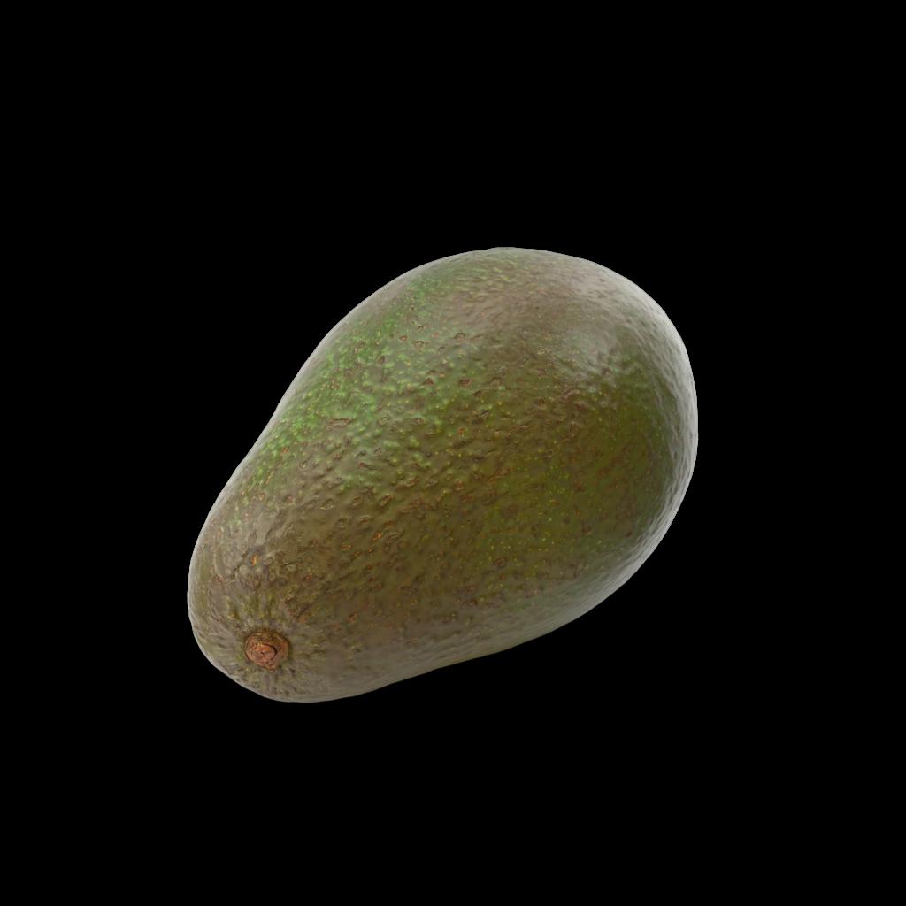 AvocadoHaas.H03.2k