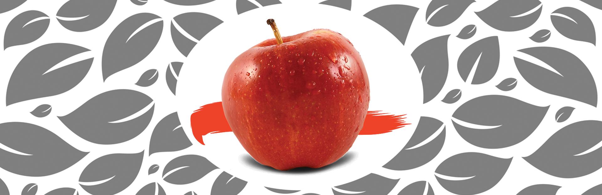 gardn slider fruits3