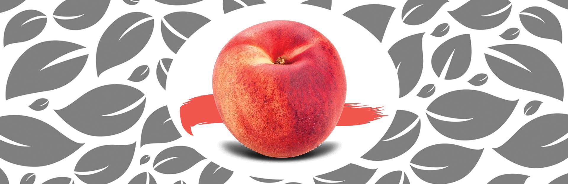 gardn slider fruits9